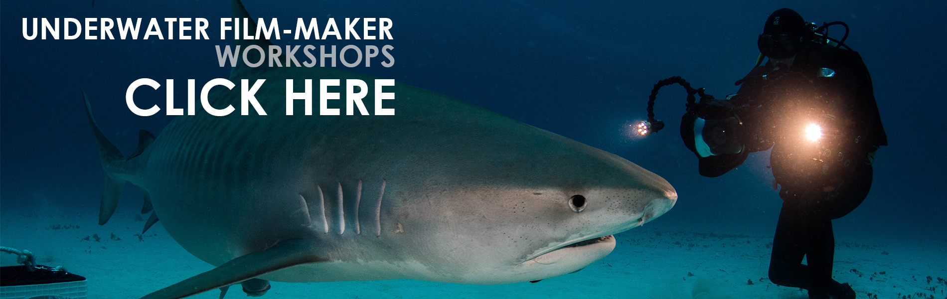 Underwater Filmmaker Workshops